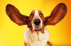 oprecht-luisteren